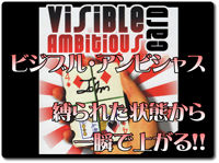 visible-ambitious