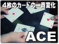 sanders-ace