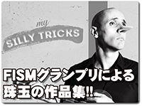 my-silly-tricks