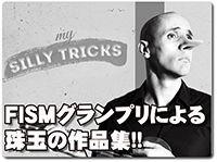 my-silly-tricks