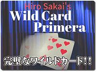 wild-card-primera