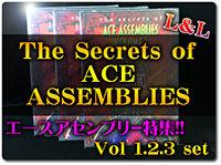 ace-assenble-landl