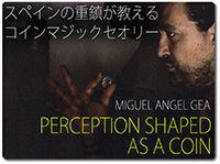 perception-shaped