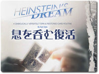 heinsteins-dream