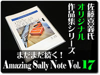 amazing-sally-note-17
