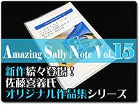 amazing-sally-note-15
