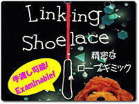 linking-shoe-lace