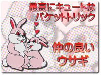 love-rabbit