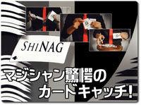 shinag