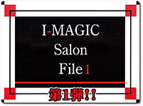 imagic-salon-file1