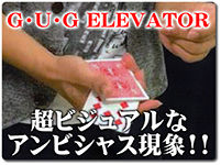 gug-elevater