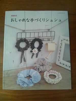 DSC_0303 コピー