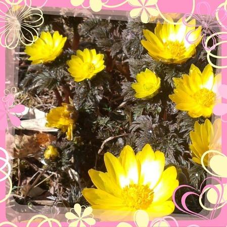 PicsArt_1395905310829