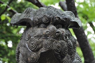 弥彦神社狛犬顔