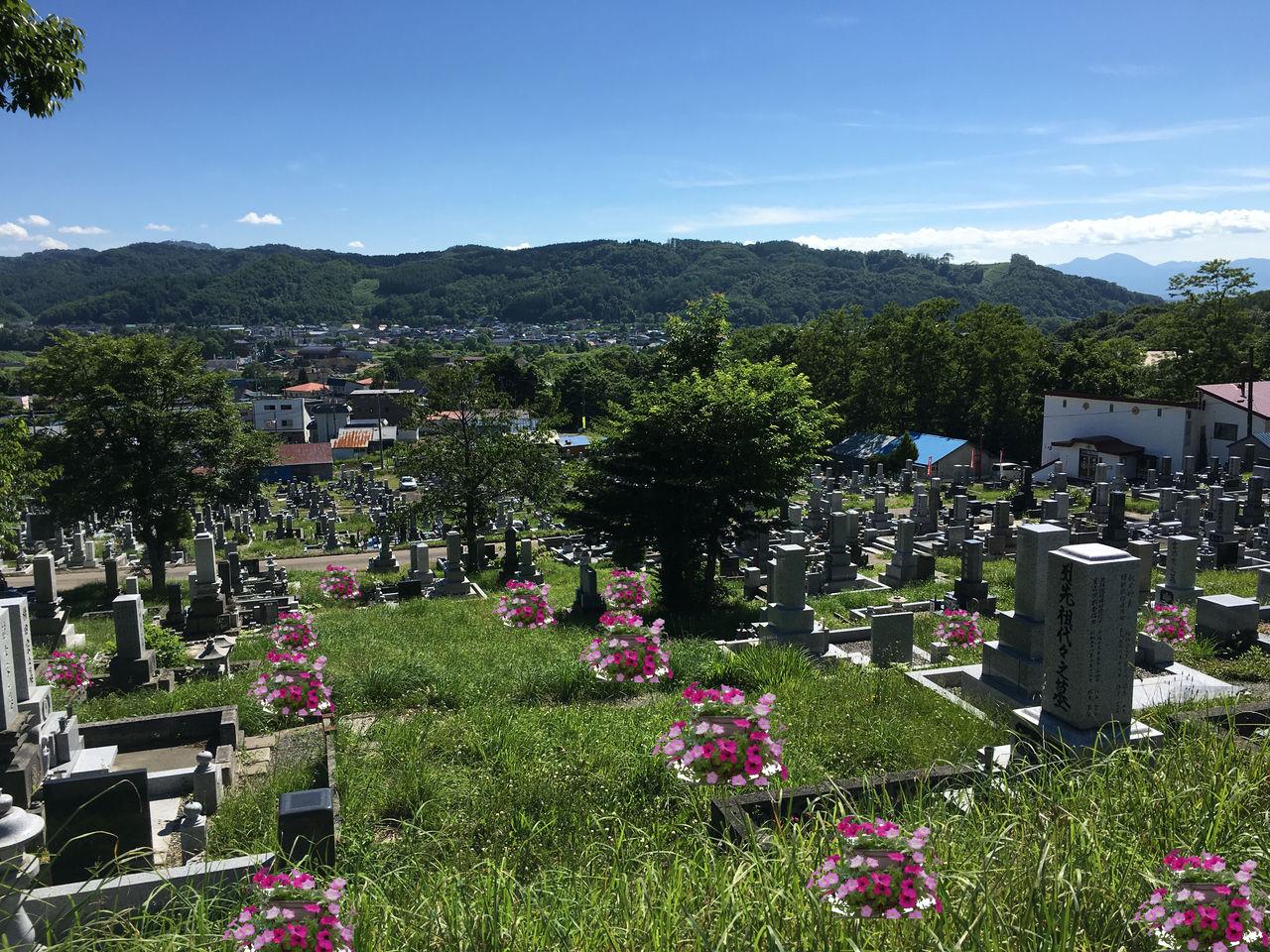 豊里墓地にもし花があったら