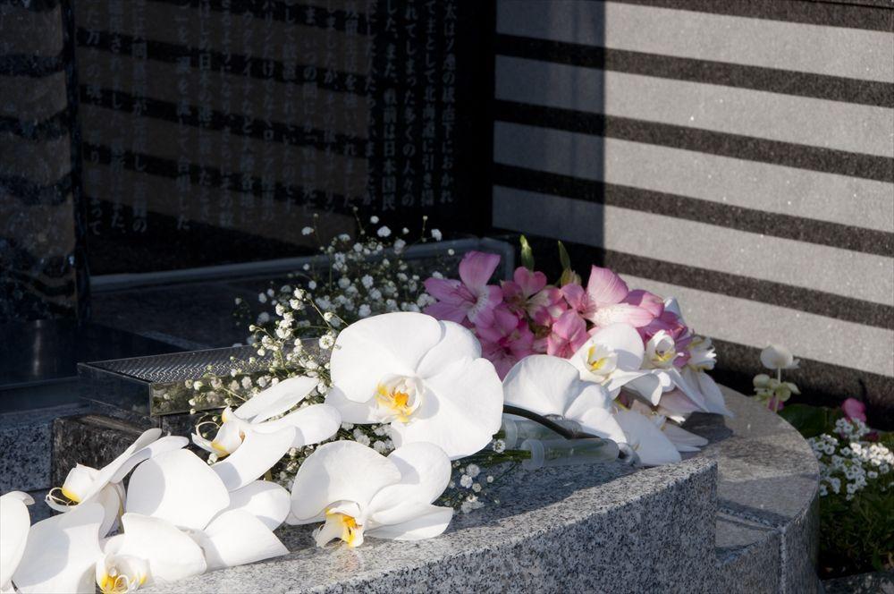 胡蝶蘭とサハリン墓2_R