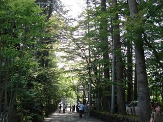 軽井沢12