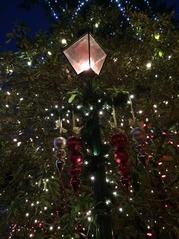 Capi Lights1