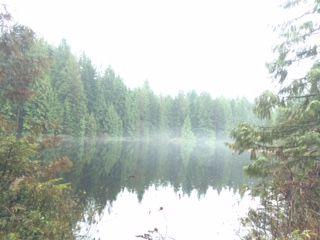 munady lake