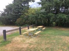 Cedar Dr Park_Picnic Table