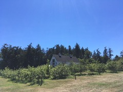 Sea Cider Winery