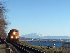 Train_Mt Baker