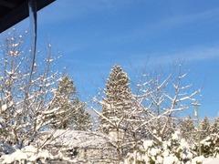 つららと雪