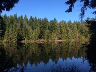 mundy lake sunny