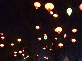 lantern8