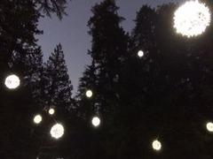 Capi Lights2