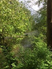 Gate Park Trail