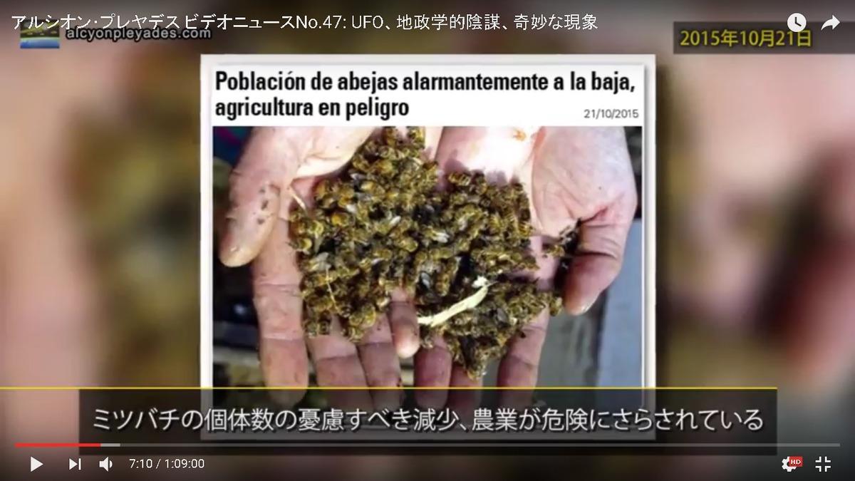 蜜蜂死亡 AP47