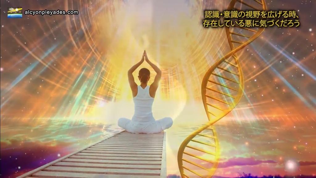 瞑想DNA AP56