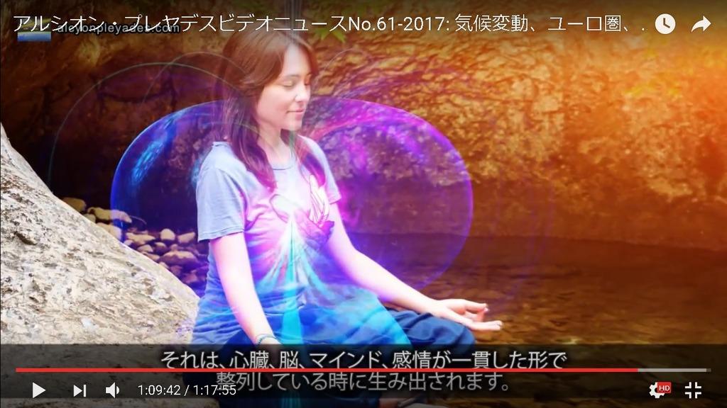 瞑想トーラス APN61