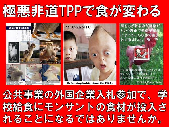 GMO TPP 癌