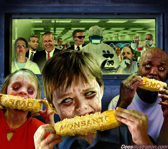 monsanto-GMO corn