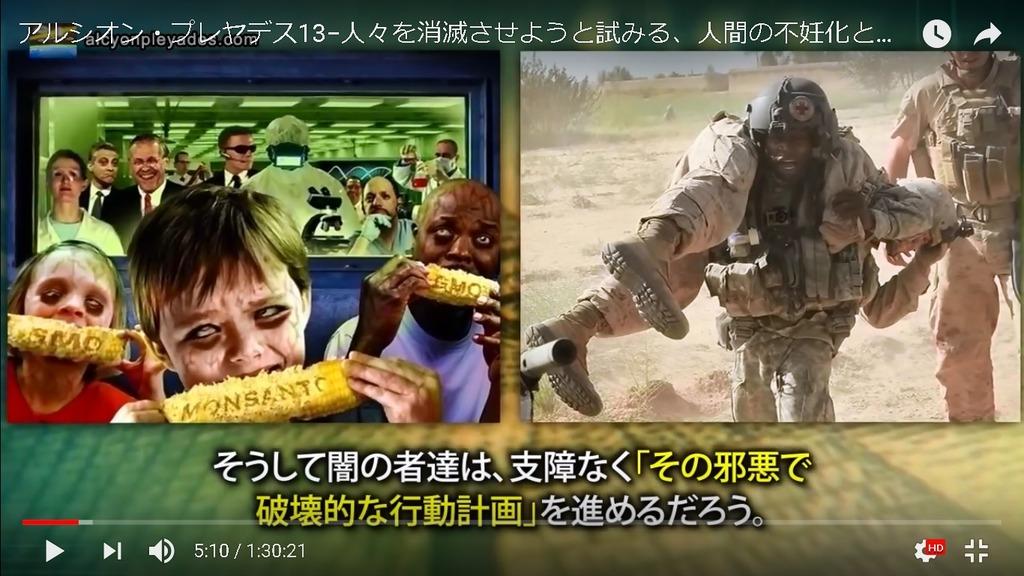 GMO CORN AP13