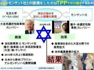 TPP GMO 米倉