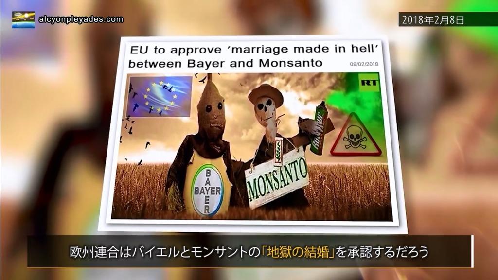 モンサント バイエル 地獄の結婚