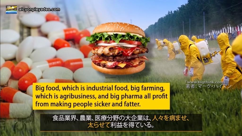 肥満 利益