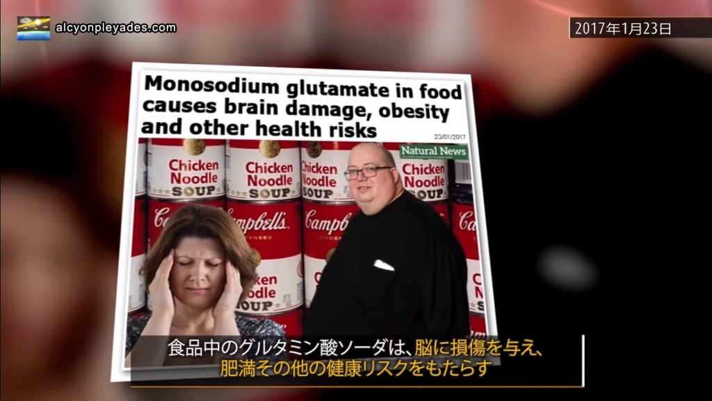 MSG 脳損傷 肥満AP77