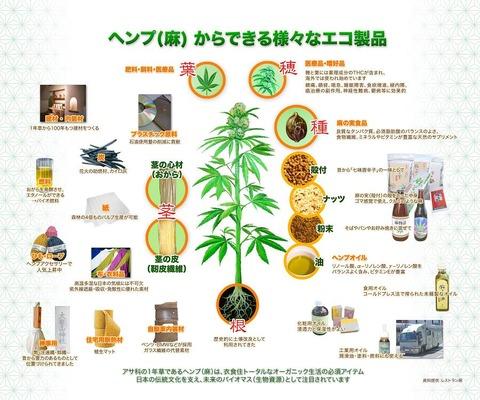 大麻製エコ商品