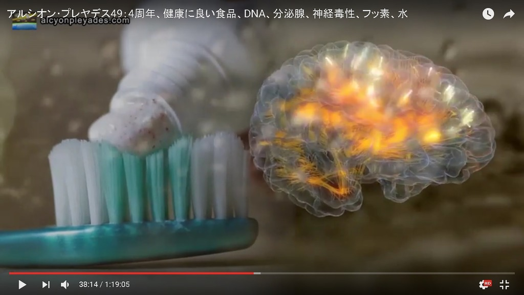 フッ素歯磨き粉AP49