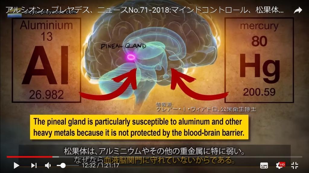 松果体 アルミニウム