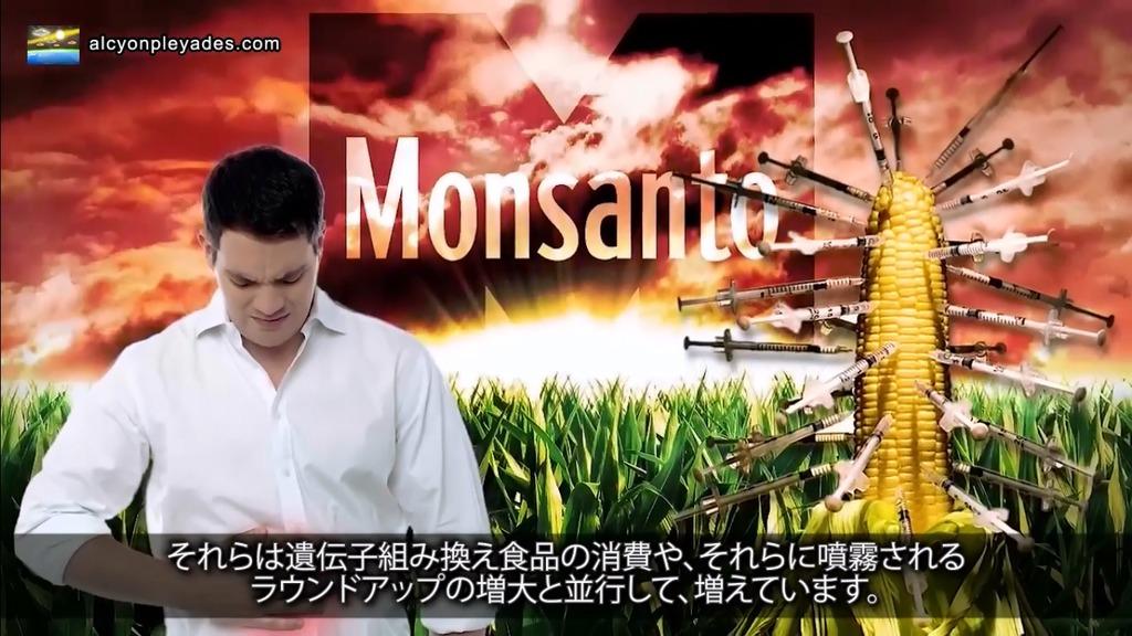 GMO CORN 注射