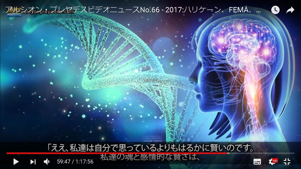 DNA脳APN66