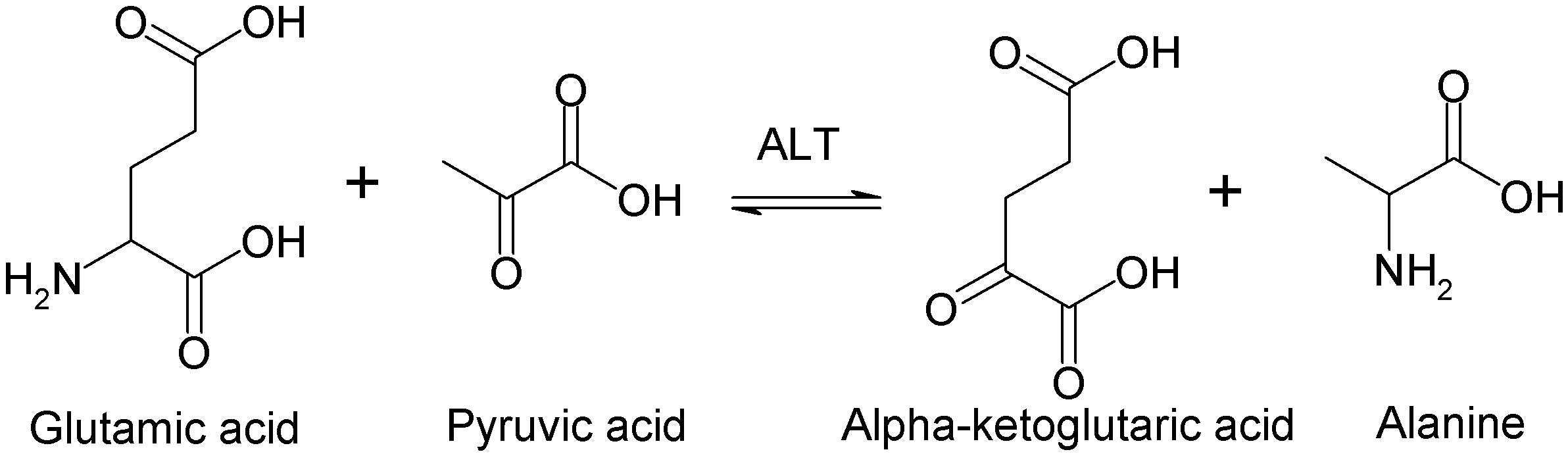 転移酵素の種類   バイオハックch