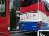 プードルバス2