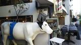 牛の床屋さん