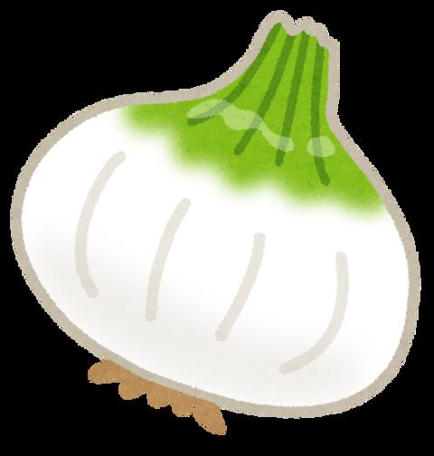vegetable_shintamanegi